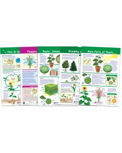 All About Plants Bulletin Board Chart Set, Gr. 3-5