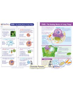 Cells - The Building Blocks of Living Things Visual Learning Guide
