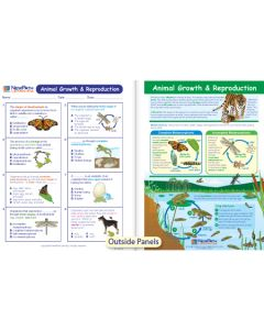 Animal Growth & Reproduction Visual Learning Guide