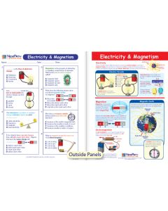 Electricity & Magnetism Visual Learning Guide