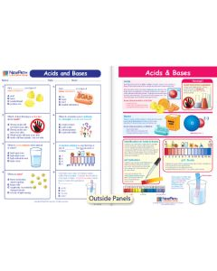 Acids & Bases Visual Learning Guide