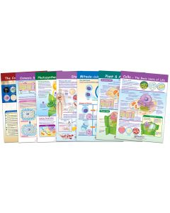 Cells Bulletin Board Chart Set of 7
