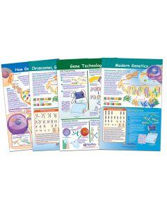 Chromosomes Bulletin Board Chart Set of 4