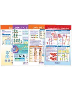 Genetics and Heredity Bulletin Board Chart Set
