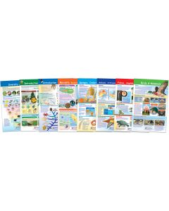 Diversity of Life Bulletin Board Chart Set of 8