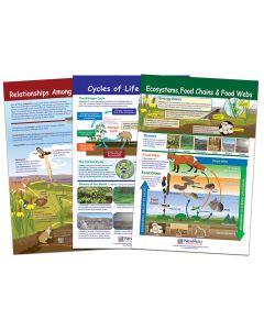 Ecology Bulletin Board Chart Set