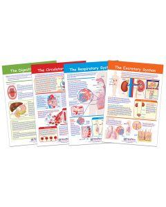 Providing Fuel and Transportation Bulletin Board Chart Set of 4