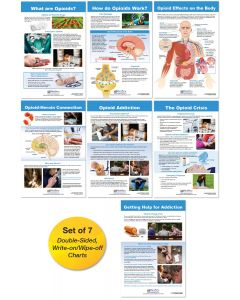 All About Opioid Drugs Bulletin Board Chart Set of 7