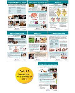 Substance Abuse & Addiction Bulletin Board Chart Set of 7
