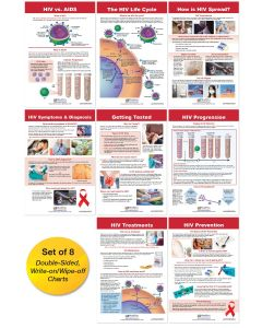 HIV & AIDS Bulletin Board Chart Set of 8