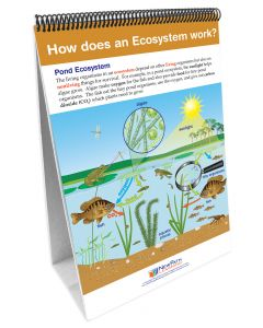 STAAR Gr. 5 – Organisms and Environments Flip Chart Set